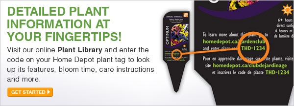 Visit our online Plant Library and enter the code on your Home Depot plant tag to look up its features, bloom time, care instructions and more. - GET STARTED