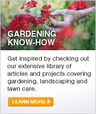 Gardening Know-How: Get inspired by checking out our extensive library of articles and projects covering gardening, landscaping and lawn care. - LEARN MORE