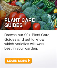 Plant Care Guides: Browse our 90+ Plant Care Guides and get to know which varieties will work best in your garden. - LEARN MORE