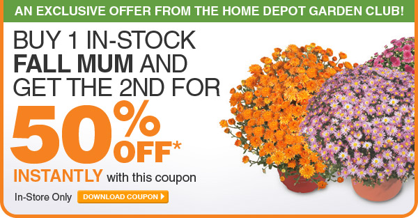 Buy 1 In-Stock Fall Mum and Get the 2nd For 50% Off - DOWNLOAD COUPON
