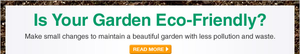 Is Your Garden Eco-Friendly? - READ MORE