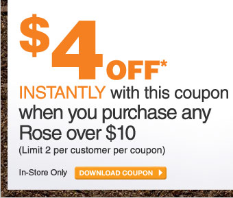 $4 Off When You Purchase Any Rose Over $10 - DOWNLOAD COUPON