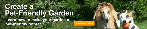 Create a Pet-Friendly Garden - READ MORE