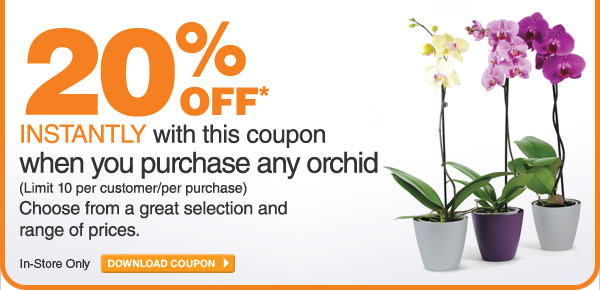 20% Off When You Purchase Any Orchid - DOWNLOAD COUPON