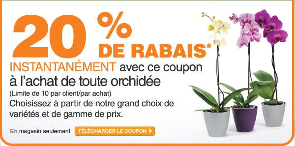 20 % de rabais sur les orchidées - TÉLÉCHARGER LE COUPON