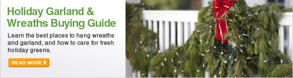 Holiday Garland & Wreaths Buying Guide - Learn the best places to hang wreaths and garland, and how to care for fresh holiday greens. - LEARN MORE