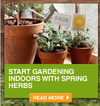 Start Gardening Indoors with Spring Herbs - READ MORE