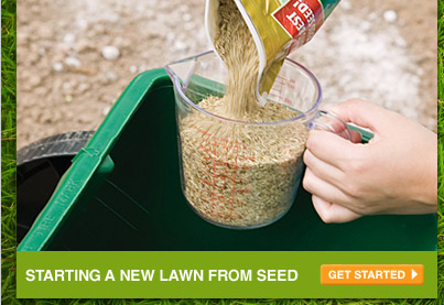 Starting a New Lawn from Seed - GET STARTED