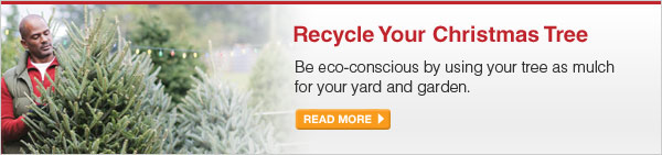 Recycle Your Christmas Tree - Be eco-conscious by using your tree as mulch for your yard and garden. - READ MORE