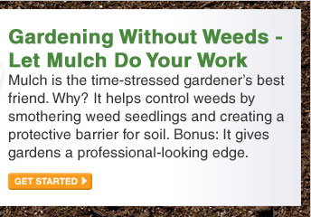 Gardening Without Weeds - Let Mulch Do Your Work - GET STARTED