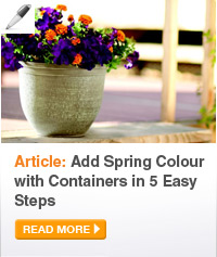 Article: Add  Spring Colour with Containers in 5 Easy Steps - READ MORE