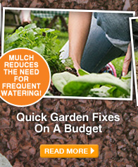 Quick Garden Fixes On A Budget - READ MORE