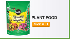 Plant Food - SHOP ALL
