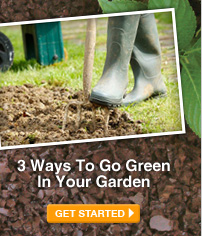 3 Ways To Go Green In Your Garden - GET STARTED