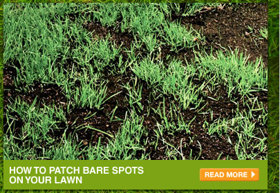 How to Patch Bare Spots on Your Lawn - READ MORE