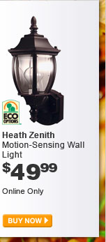 Heath Zenith Motion-Sensing Wall Light - BUY NOW