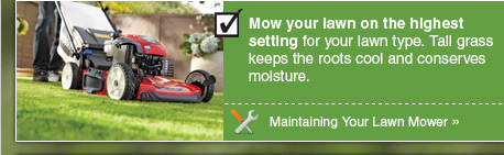 Mow your lawn on the highest setting for your lawn type. Tall grass keeps the roots cool and conserves moisture. - Project: Maintaining Your Lawn Mower