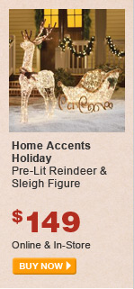 Home Accents Pre-Lit Reindeer & Sleigh Figure - BUY NOW