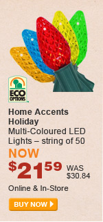 Home Accents Holiday Multi-Coloured LED Lights - BUY NOW