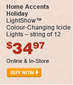 Home Accents Holiday LightShow Colour-Changing Icicle Lights - BUY NOW