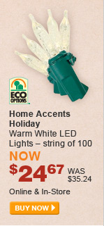 Home Accents Holiday Warm White LED Lights - BUY NOW