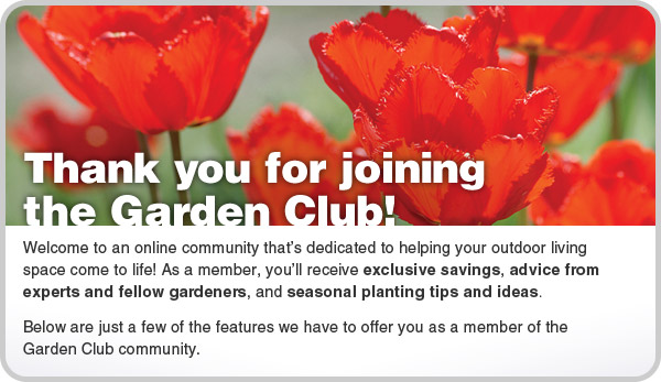 Thank you for joining the Garden Club! Welcome to an online community dedicated to helping your outdoor living space come to life! As a member, you'll receive exclusive savings, advice from experts and fellow gardeners, and seasonal planting tips.